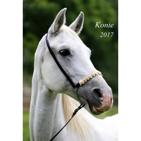 Kalendarz 2017 Konie (13 plansz)