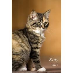 Kalendarz 2017 Koty (13 plansz)