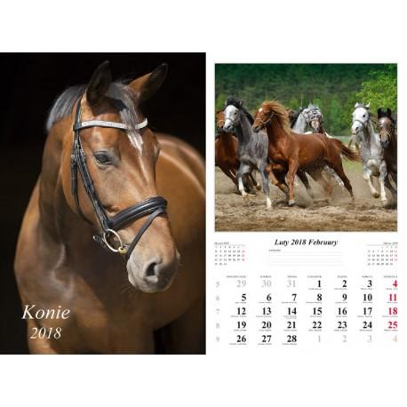 Kalendarz 2018 Konie (13 plansz)