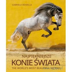 Najpiękniejsze konie świata