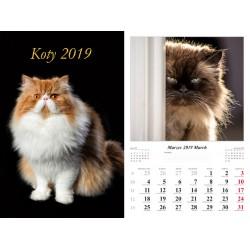 Kalendarz 2019 Koty (7 plansz)