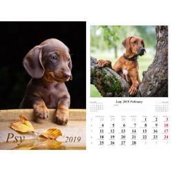 Kalendarz 2019 Psy (13 plansz)