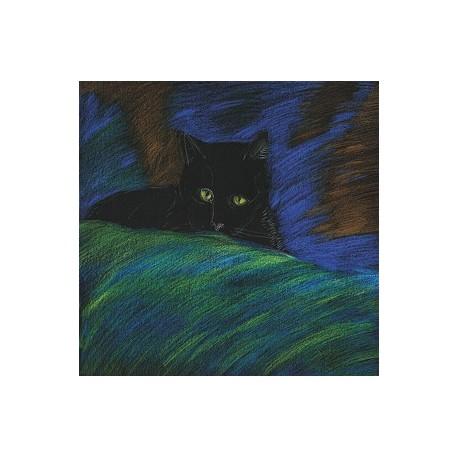 NOTES Kot Tajemniczy