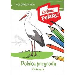 Polska przyroda. Zwierzęta