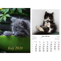 Kalendarz 2020 Koty 7 plansz
