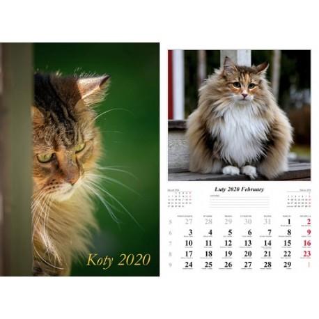 Kalendarz 2020 Koty 13 plansz
