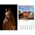 Kalendarz 2020 Konie 13 plansz
