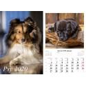 Kalendarz 2020 Psy 13 plansz