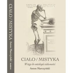 Ciało / mistyka. Wstęp do ontologii cielesności