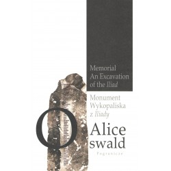 Monument. Wykopaliska z Iliady