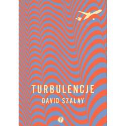 Turbulencje