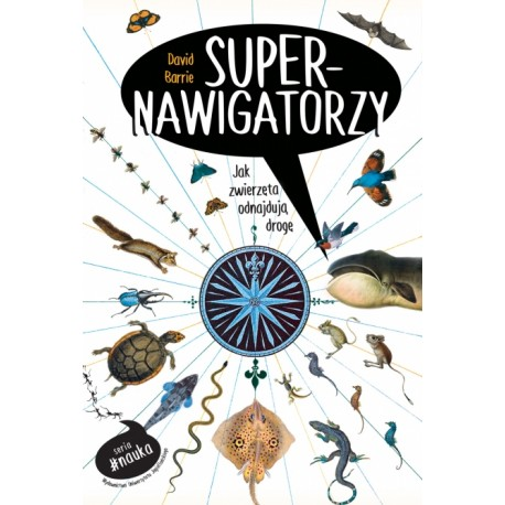 Supernawigatorzy. Jak zwierzęta odnajdują drogę