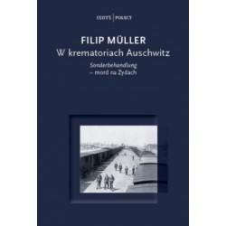 W krematoriach Auschwitz. Sonderbehandlung - mord na Żydach