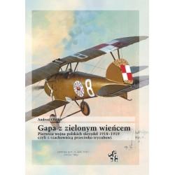 Gapa z zielonym wieńcem czyli z szachownicą przeciwko tryzubowi. Pierwsza wojna polskich skrzydeł 1918–1919