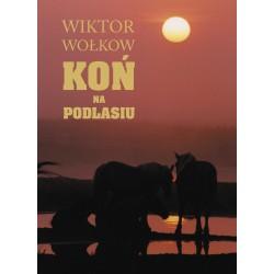 Koń na Podlasiu