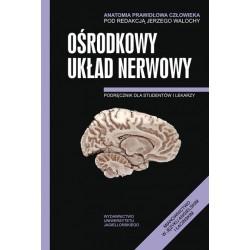 Ośrodkowy układ nerwowy Anatomia prawidłowa człowieka