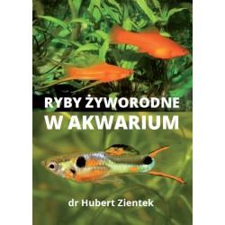 Ryby żyworodne w akwarium