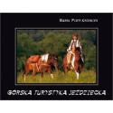 Górska turystyka jeździecka