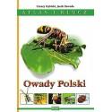 Owady Polski Altas i klucz