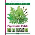 Paprotniki Polski Atlas i klucz