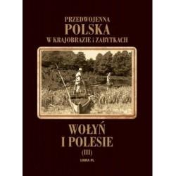 Wołyń i Polesie. Tom 3 Przedwojenna Polska w krajobrazie i zabytkach