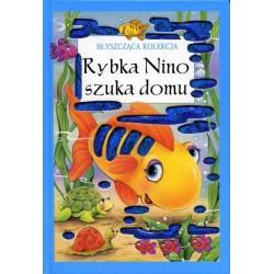 Rybka Nino szuka domu