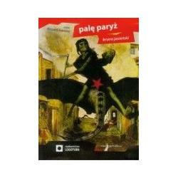 Palę Paryż AUDIOBOOK